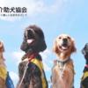 施設紹介 – 社会福祉法人 日本介助犬協会